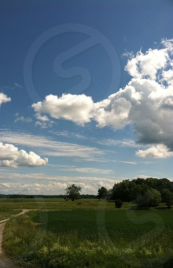 green grass and green trees under blue skies and white clouds photo