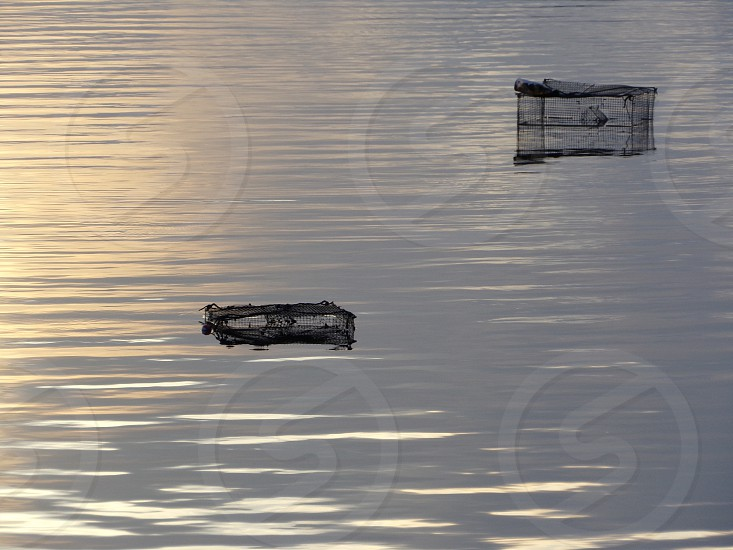Early morning crab traps. Holly Hill Florida.  photo