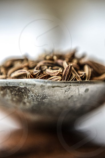 brown and white seeds in silver bowl photo