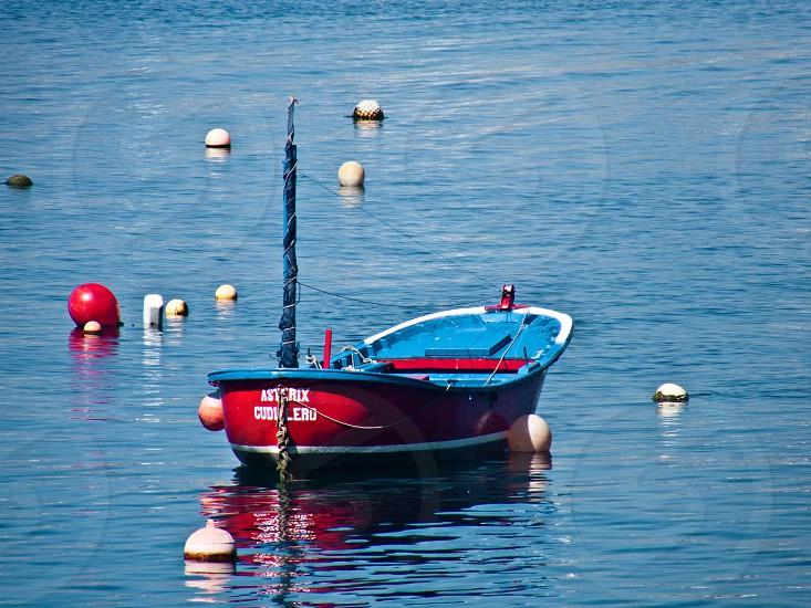 blue and read canoe on sea photo