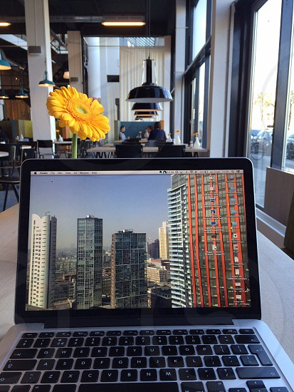 Working on a MacBookPro Apple computer in a coffee place with a nice laptop background picture of the Rotterdam skyline on it with a yellow flower photo