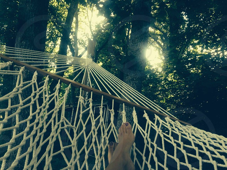 person lying in white hammock hanging from deciduous trees photo