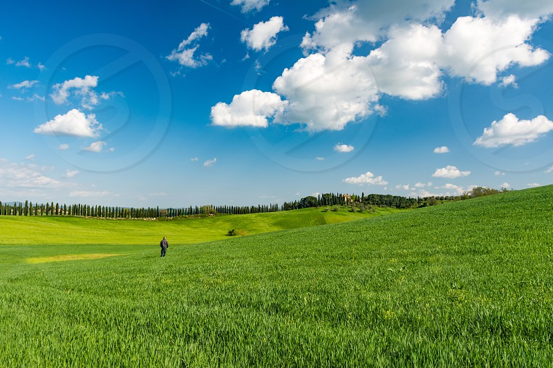 Tuscany siena landscape season spring Italy countryside nature green sky blue peaceful clouds field colorful cypress trees  photo