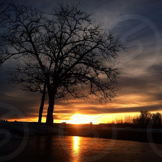 Sunrise North Hadley Massachusetts photo