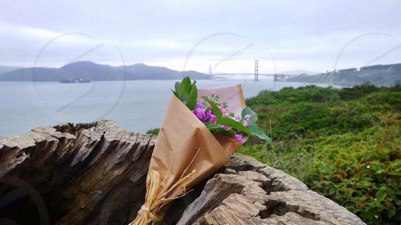 brown flower bouquet photo