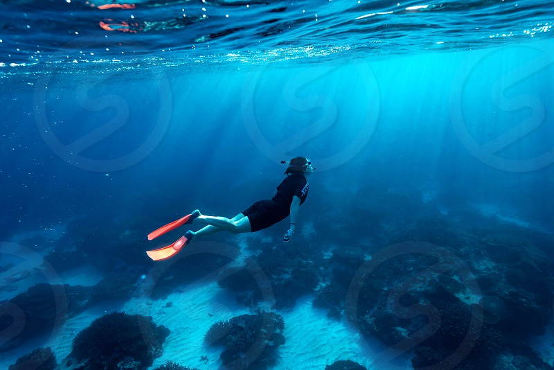 Snorkelling on the Great Barrier Reef Australia photo