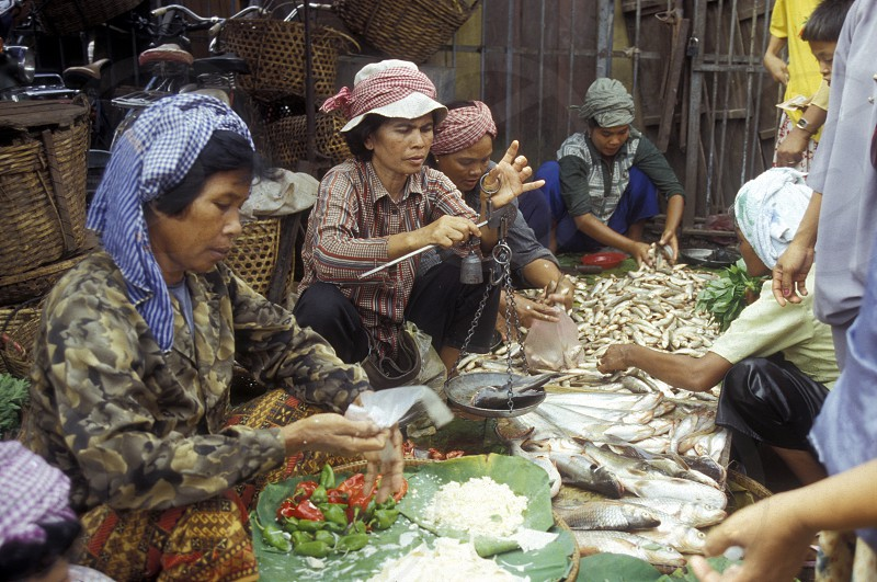 the market in the city of phnom penh in cambodia in southeastasia.  photo