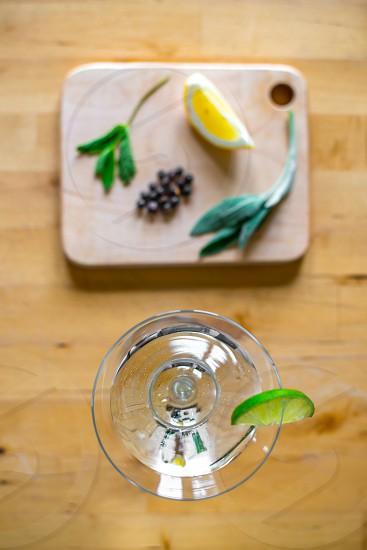 Gin botanicals 7 photo
