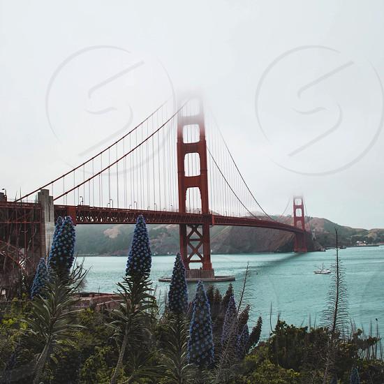 Golden Gate Bridge bridge site history site seeing view west west coast pacific ocean hertz travel blog nature deco amazing? Scenic  photo