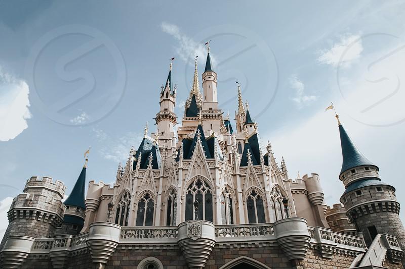 Cinderella's Castle photo