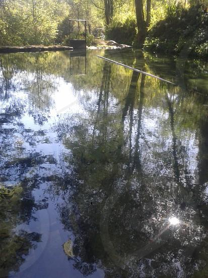 un bello paisaje de un manantial de agua cristalina photo