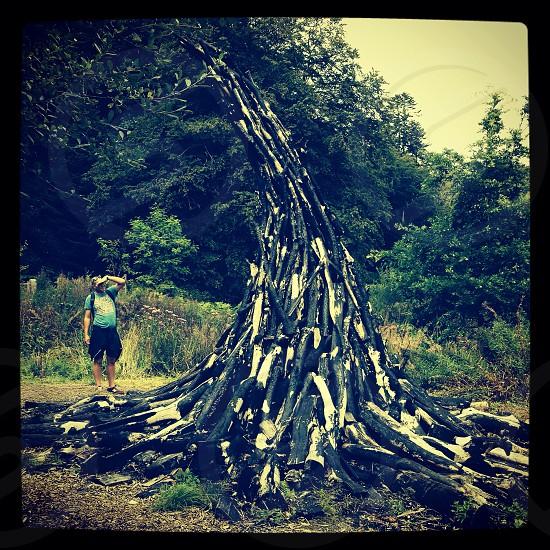 Charcoal sculpture  photo