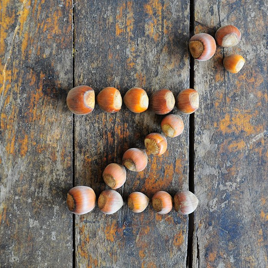 brown seeds arranged to form letter Z photo