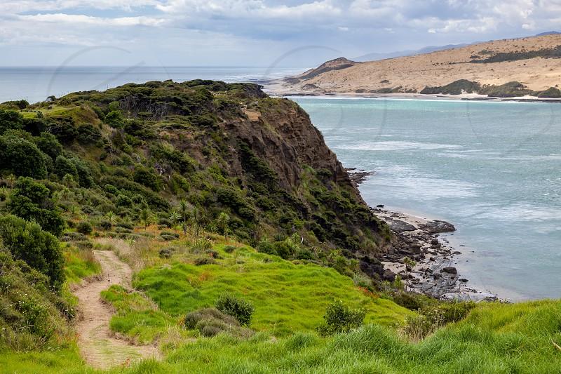 Coastal Walk Arai-Te-Uru Recreation reserve in Omapere in New Zealand photo