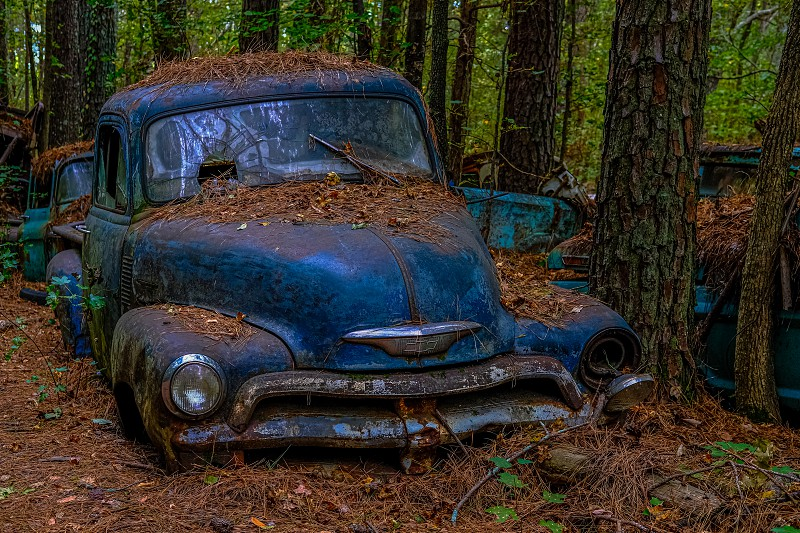There is a place in North Georgia called Old Car City. It is an absolute playground for photographers. It is a family owned business that has been around for about 90 years. There are 34 acres of woods with about 4000 old cars ranging from the early 20th century to the early 1970s. This old chevy truck is one of them. photo