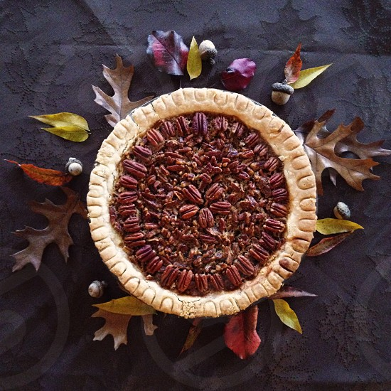 white round pie on dried leaves during daytime photo