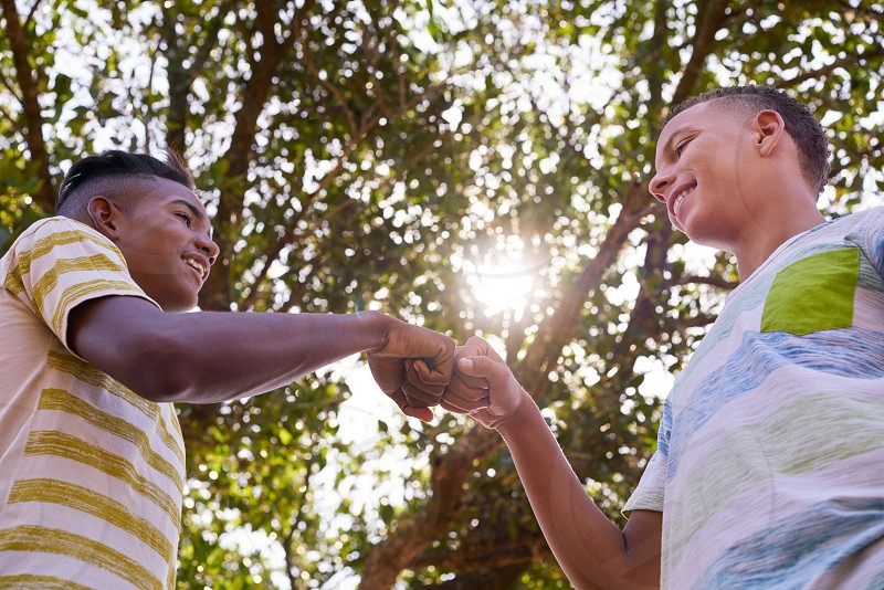 friendship; hands; happy; smiling; boys; kids; teens; teenagers; friends; adolescence; adolescent; african american; black; bond; boy; buddies; caucasian; concept; fun; joy; kid; life; male; man; meeting; men; millennials; mixed; mixed-race; multiethnic; multiracial; people; persons; race; salute; shaking; smile; students; teen; teenager; together; two; white; young; youth; racism; integration; fist; sun; flare photo