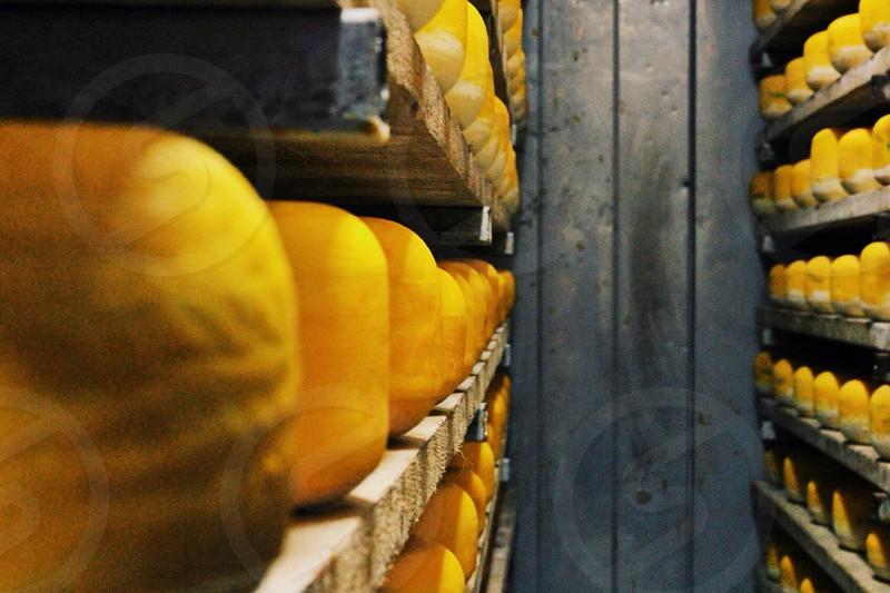orange cheese photo