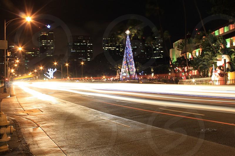 Christmas- Honolulu Hale Honolulu Hawaii 2012 photo