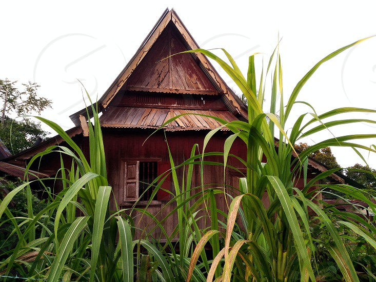 abandoned house . photo