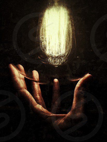 person holding clear bulb photo
