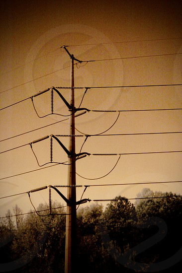 Rough and gritty image of electricity powerlines in a rural setting photo