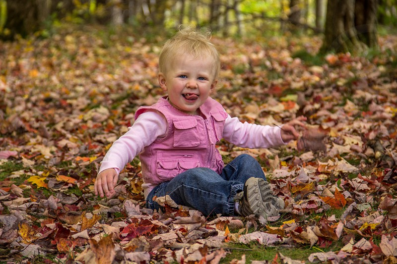 In the leaves photo