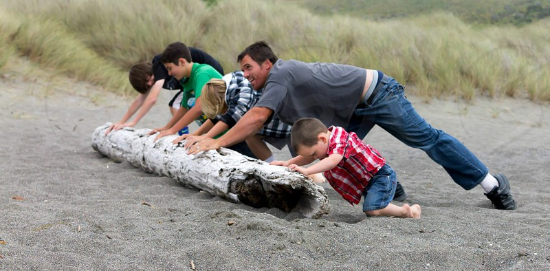 people pushing a gray drift wood on a sandy shore photo