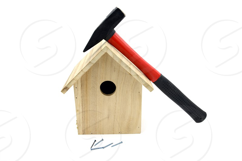 building bird nesting box with hammer nails. white isolated background photo