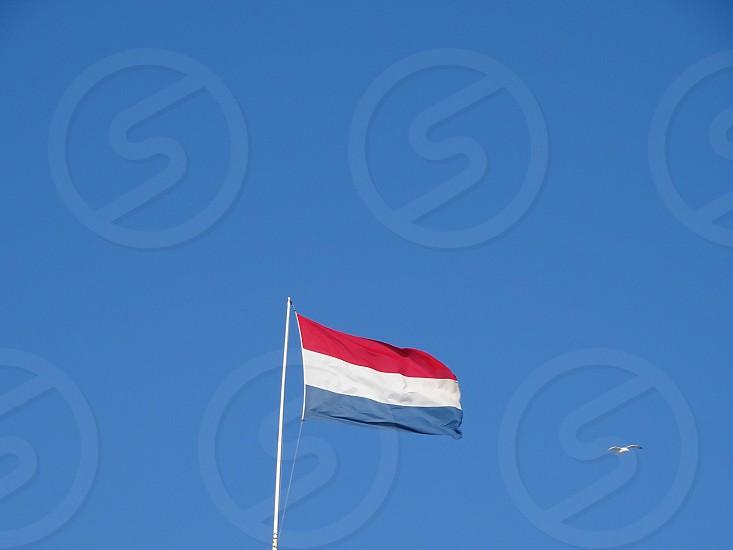 Flagdutchdutch flagflagpoleminimalismthree colors.hollandthe netherlands mastred white and blueblue skyskybluecountrynationwavingnationalsymbolnationalism photo