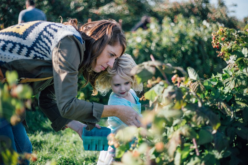 Orchard raspberry picking mother daughter autumn fall Midwest  photo