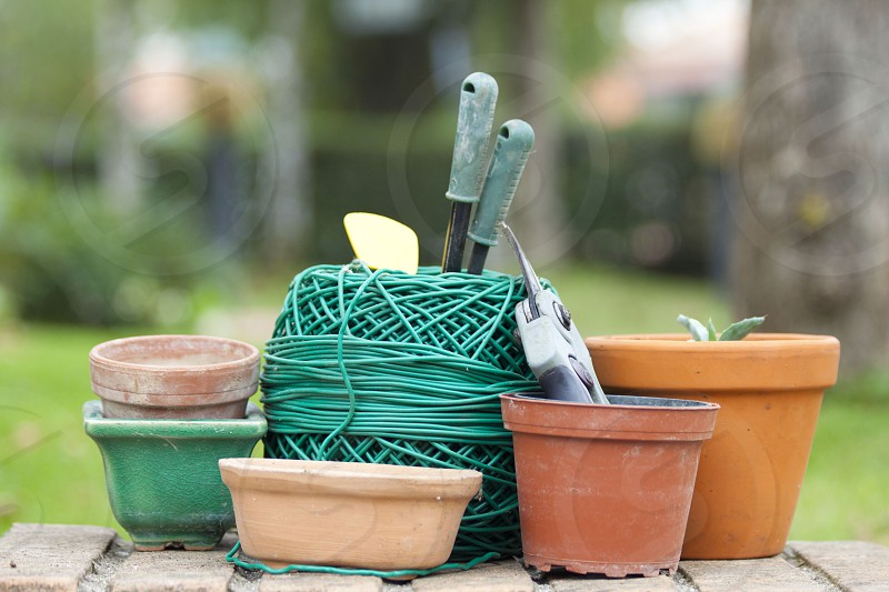 accessories for gardening and the vegetable garden photo