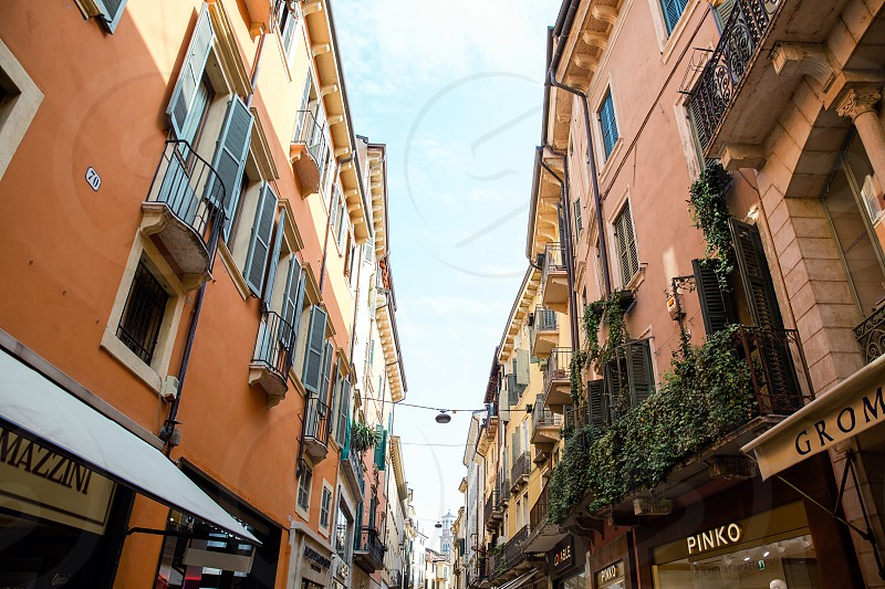 Verona travel destination statue historical buildings photo