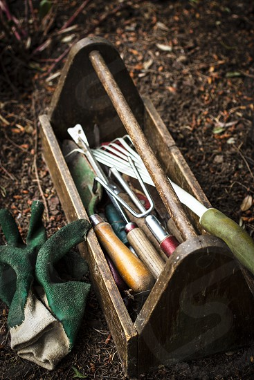 Garden tools gardening farming agriculture farm to table fruits vegetables photo