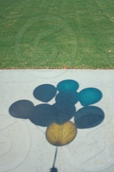 balloons globos light sun up blue yellow shadow color photo