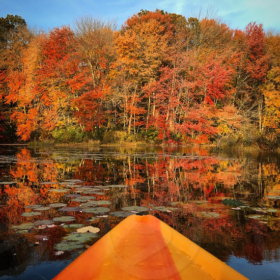 Kayak fall New England Connecticut water foliage leaves  photo