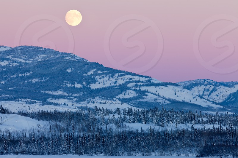 Scenic winter mountain landscape north of Whitehorse Yukon Territory Canada with full moon rising in pink cloudless sky photo