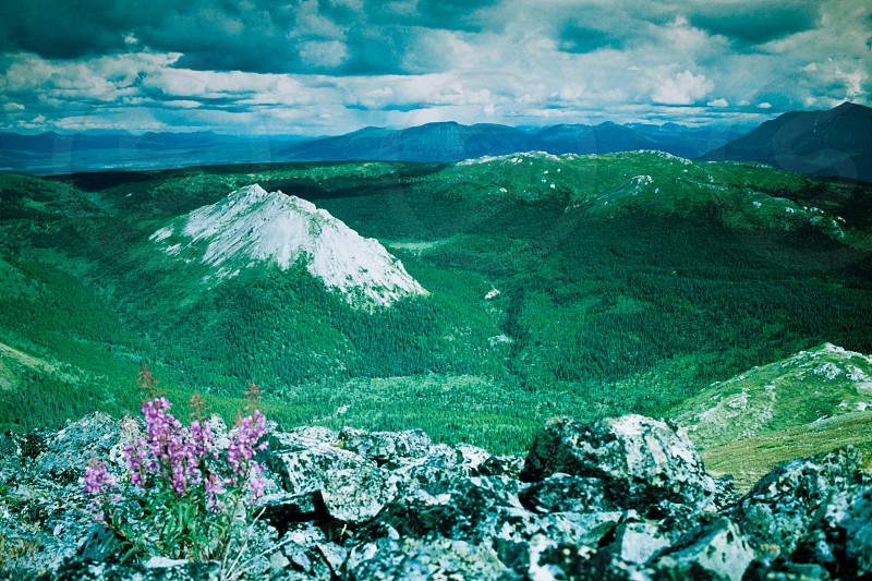 Endless uninhabited boreal forest mountain wilderness of southern Yukon Territory Canada photo