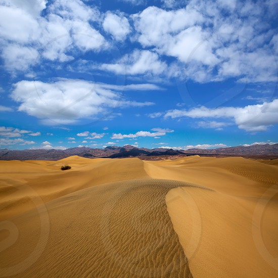 Mesquite Dunes desert in Death Valley National Park California photo