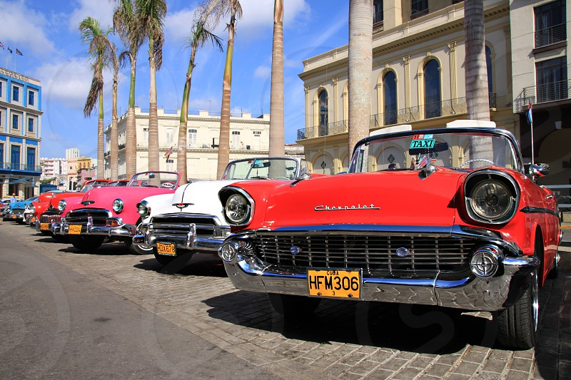 row of vintage cars parked outside building photo