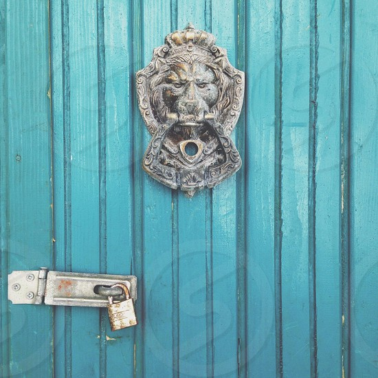 silver lion door knocker photo