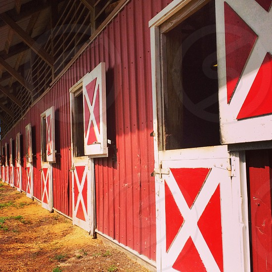 Horse stables. photo