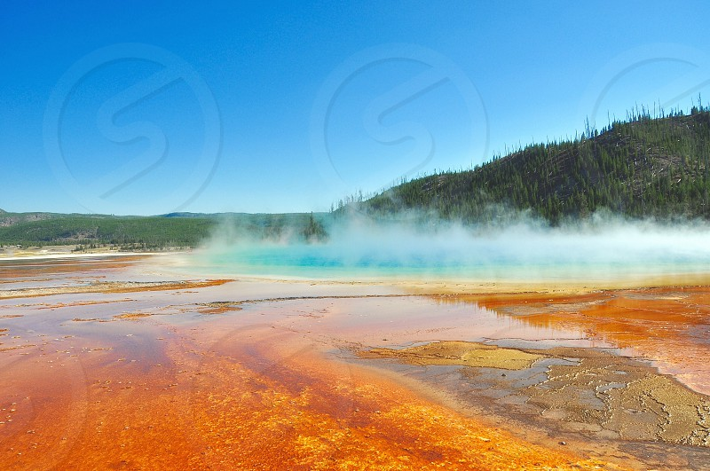 Yellostone national park photo