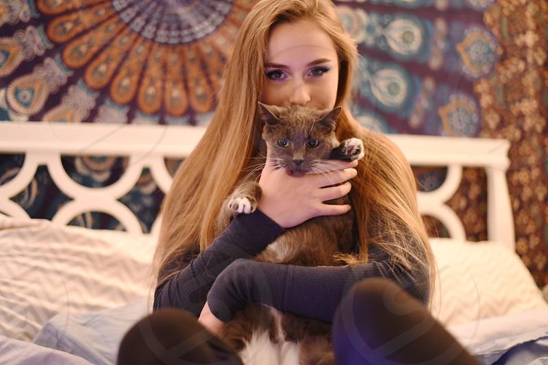 Senses touching soft furry cat photo
