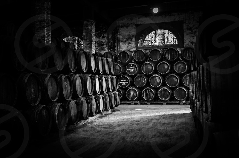 Wine Barrels from the Sherry Producer Tio Pepe in Jerez Spain photo