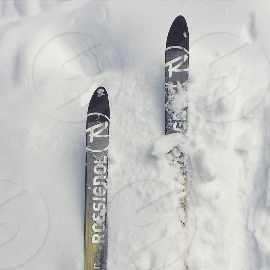 roesiedol skis photo