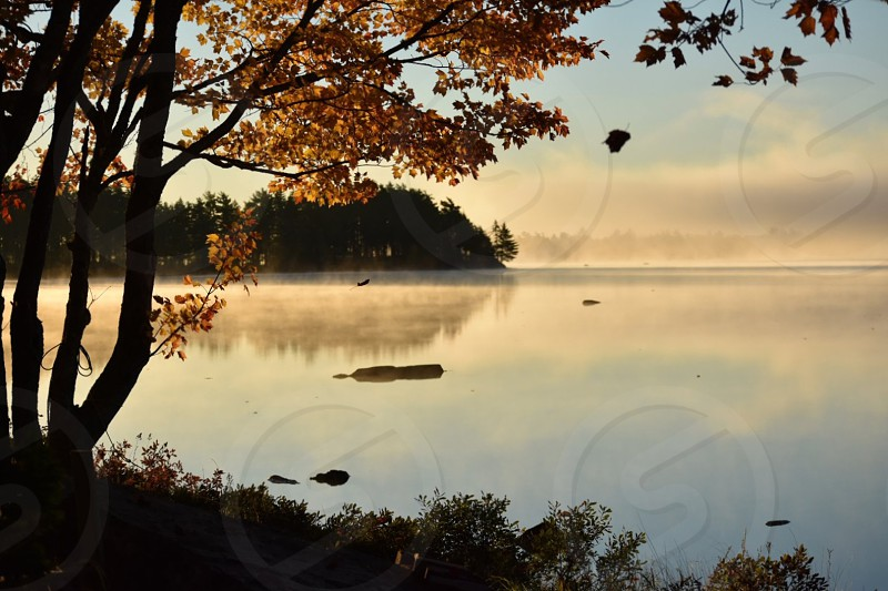 Autumn Reflection.  Island view in the morning mist reveals reflection. photo
