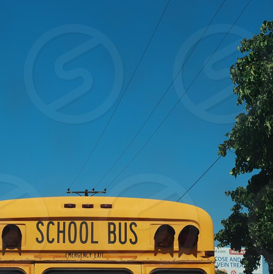 yellow School Bus during day time photo