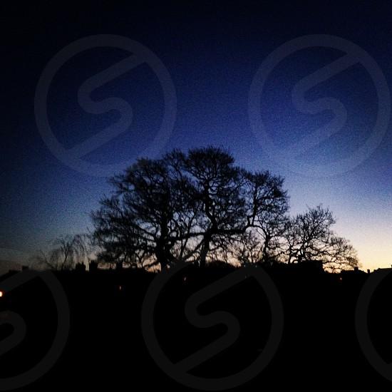 Dawn from my window photo