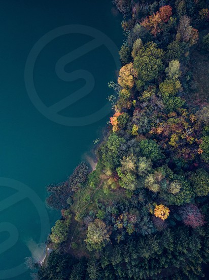 Lake shore with colourful trees at autumn. Drone photography photo